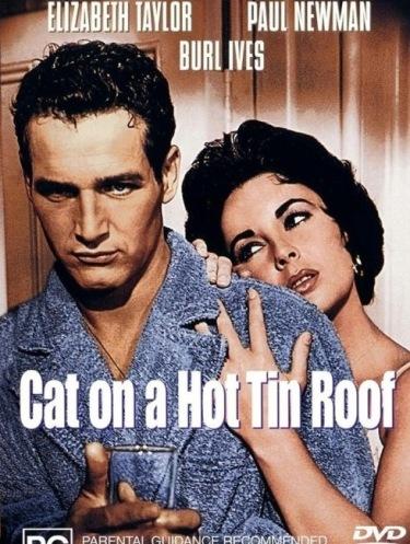 Kotka na gorącym blaszanym dachu. Plakat 2